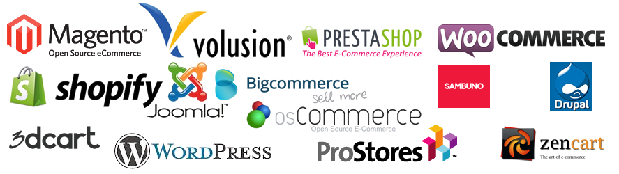 professional-ecommerce-websites