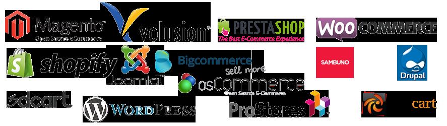 professional-ecommerce-websites